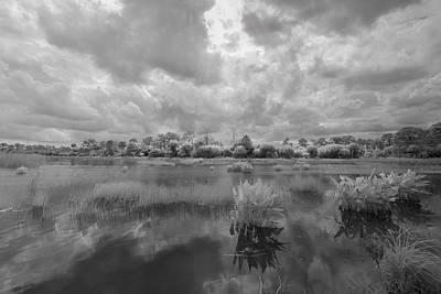 Dyer Pond Poster by Jon Glaser