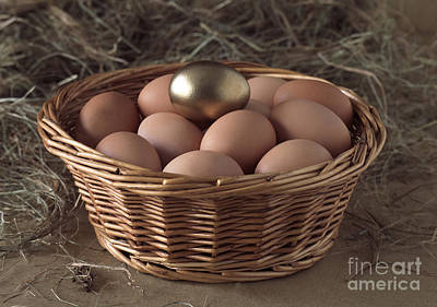 Eggs In Basket With A Golden One Poster by Gerard Lacz