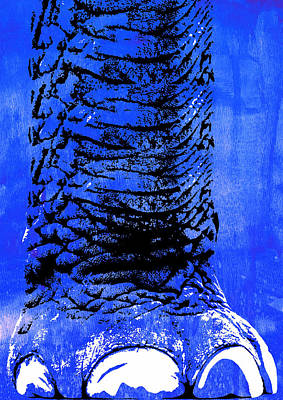 Elephant Animal Decorative Blue Wall Poster  1 - By Diana Van Poster by Diana Van