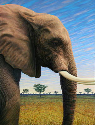 Elephant On Safari Poster by James W Johnson