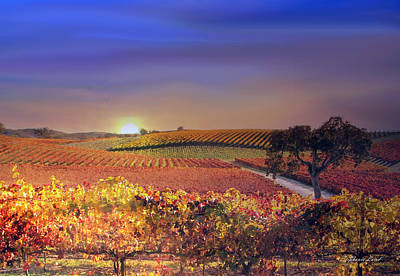 Wine Country Poster featuring the photograph Enchanted Vineyard by Stephanie Laird