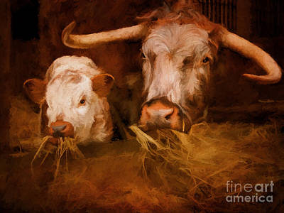 English Longhorn Cattle Poster by ShabbyChic fine art Photography
