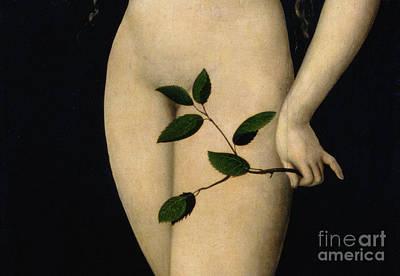Eve Poster by The Elder Lucas Cranach