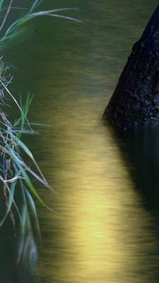 Evening Reflections Poster by Karen Musick