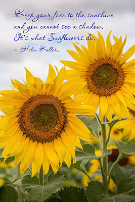 Face The Sunshine Poster by Dale Kincaid
