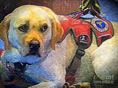 Faithful Service Dog Poster by Shelly Weingart