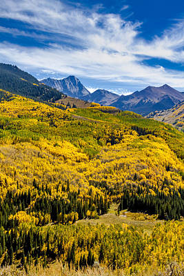 Fall Colors In Colorado Mountains Poster by Teri Virbickis