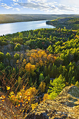 Fall Forest And Lake Top View Poster by Elena Elisseeva