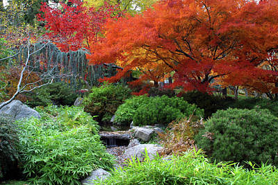 Fall In The Japanese Garden II Poster by Jim Nelson