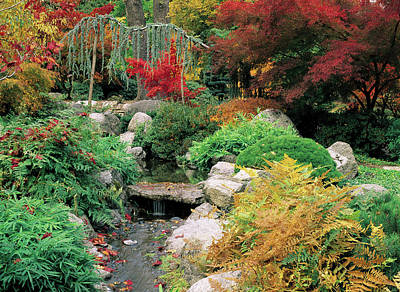 Fall In The Japanese Garden Poster by Jim Nelson
