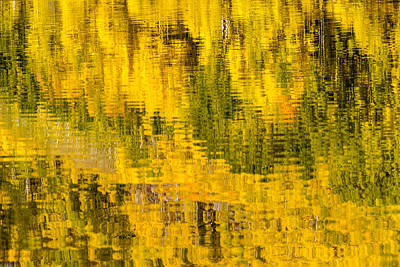 Fall Morning Reflection Poster by Teri Virbickis