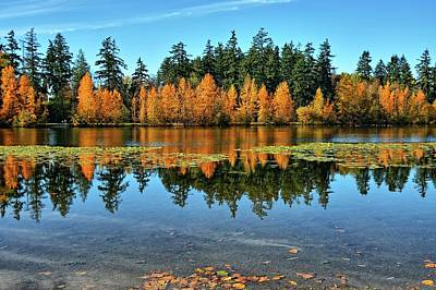 Fall On Wapato Poster by Tim Coleman