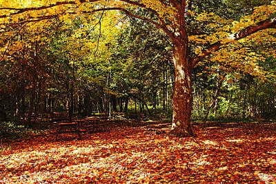 Fall Picnic Poster by Debbie Oppermann
