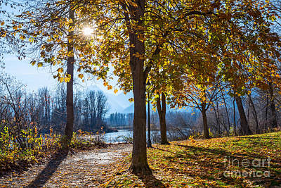 Fall Scene In Waterfront Park Poster by Jamie Pham