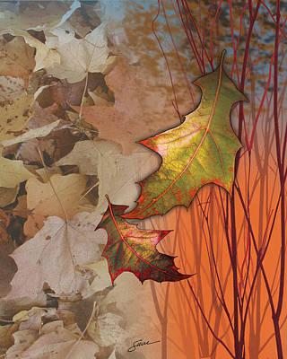 Fall Spectrum Poster by Harold Shull