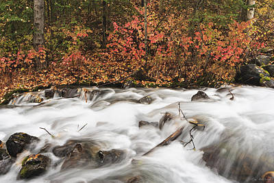 Falling Water Creek Autumn Poster by Ray Bulson