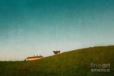 Farm Horses Poster by Carlos Caetano