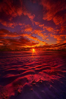 Feeling Good Never Cost A Thing Poster by Phil Koch