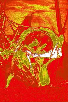 Fire Dance / 5 Poster by Jean-Marie Bottequin