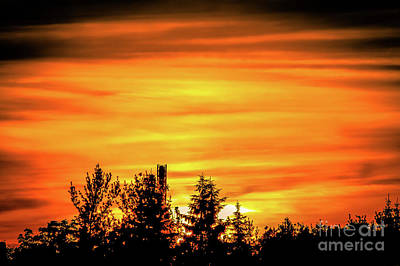 Fire In The Sky Poster by Claudia M Photography