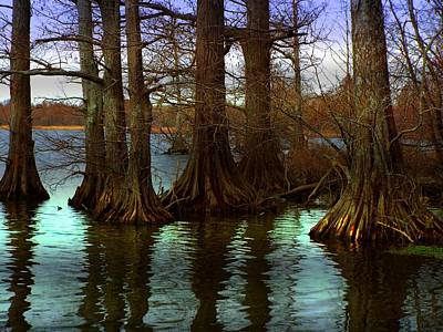 First Rays At Reelfoot Poster by Julie Dant