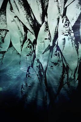 Fish Pattern Poster by Tom Gowanlock