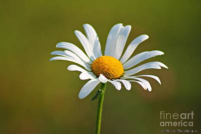 Flowerd Poster by Olivia Narius