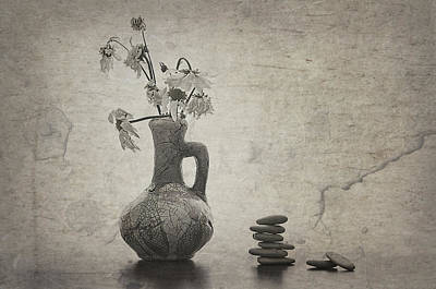 Flowers And Stones Poster by larisa Fedotova