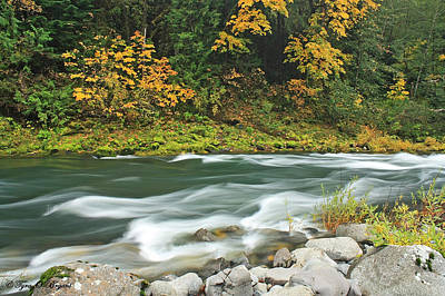 Flowing Umpqua River Poster by Tyra  OBryant