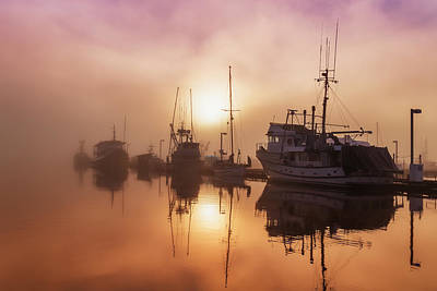 Fog Lifting Over Auke Bay Harbor Poster by John Hyde