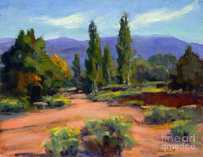 Late Afternoon In Santa Fe Poster by Maria Hunt