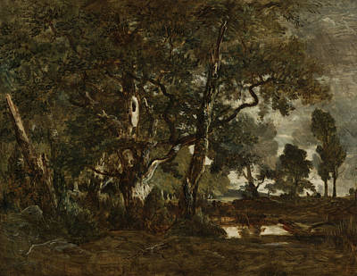 Forest Of Fontainebleau Cluster Of Tall Trees Overlooking The P Poster by Theodore Rousseau