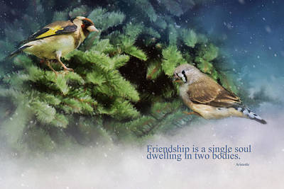 Friendship Is - Bird Art Poster by Jordan Blackstone