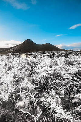 Frosted Over Hinterland Poster by Jorgo Photography - Wall Art Gallery