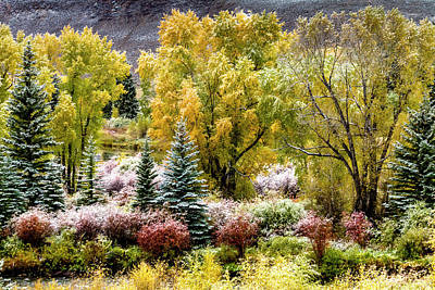 Frosty Autumn Mountain Morning Poster by Teri Virbickis