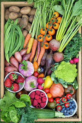 Fruit And Veg Poster by Tim Gainey