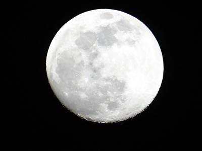 Full Moon Poster by Exploramum Exploramum
