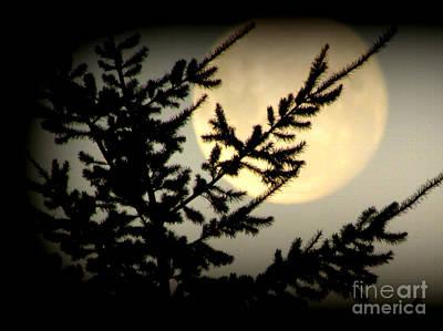 Full Moon Poster by Joyce Woodhouse