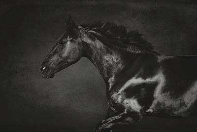 Galloping Horse Artwork 2 Poster by Wolf Shadow  Photography