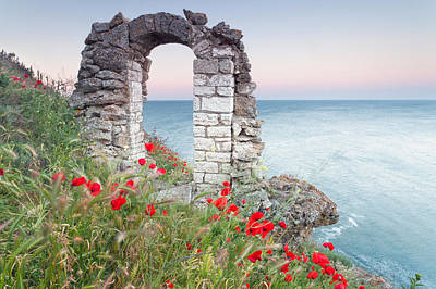 Gate In The Poppies Poster by Evgeni Dinev