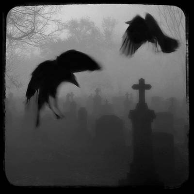Ghost Crows Poster by Gothicolors Donna Snyder
