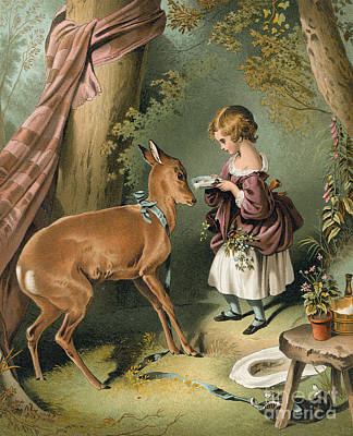 Girl Feeding A Deer Poster by Sir Edwin Landseer