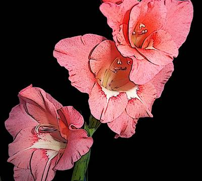 Gladiolus Bloom Poster by Alpha Pup