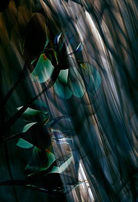 Glass Transparency Poster by Marsha Tudor