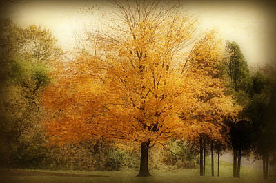 Golden Tree Poster by Sandy Keeton