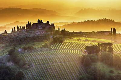 Golden Tuscany Poster by Evgeni Dinev