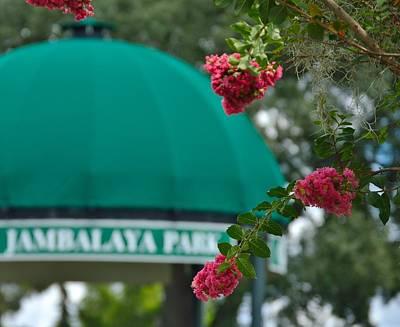 Gonzales Louisiana Jambalaya Park Poster by D S Images