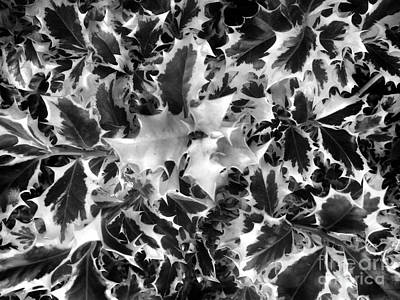 Gothic Autumn. Monochrome Poster by Sofia Goldberg