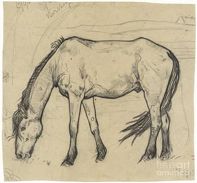 Grazing Horse In Noordwijk Poster by Celestial Images