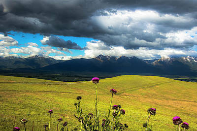 Green Hills And Stormy Skies Poster by Amy Sorvillo